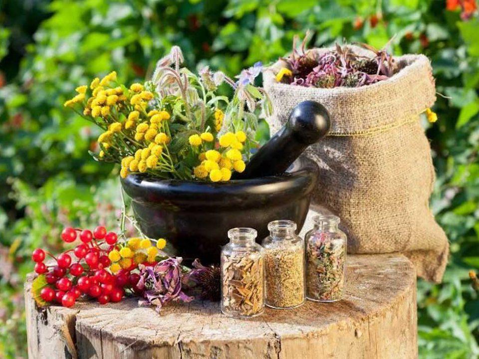 محصولات دارویی گیاهی در سالهای اخیر در بازار ایران